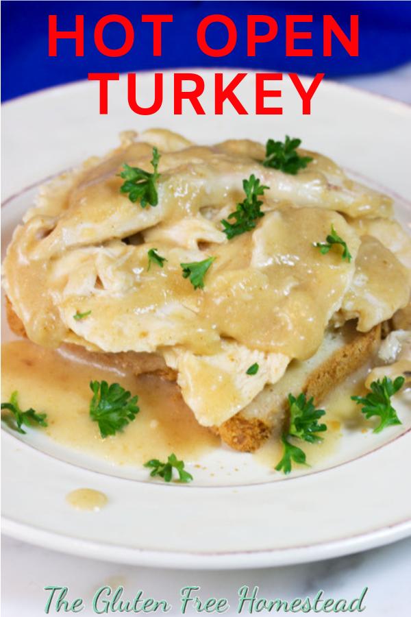 Hot Open Turkey