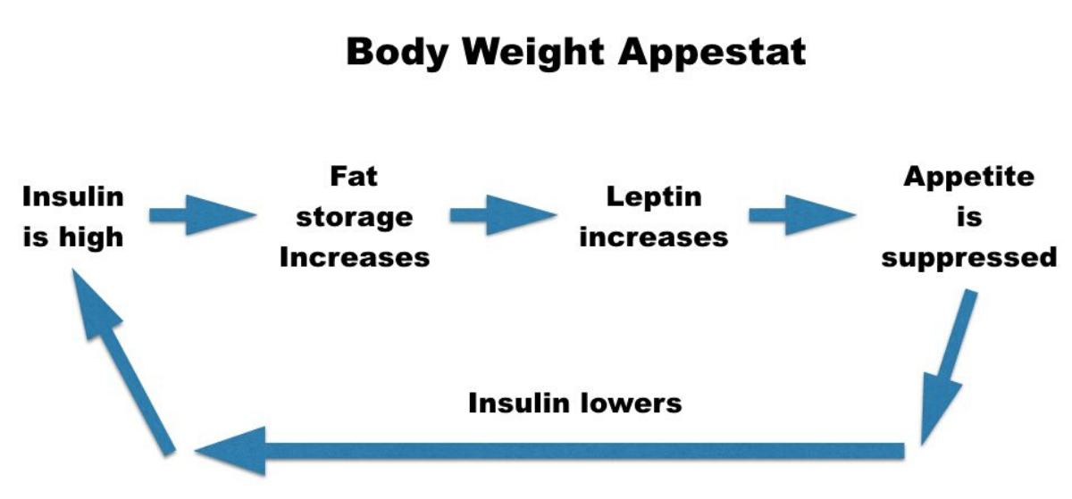 Dieting: Body Set Weight